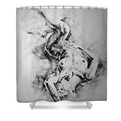 Page 21 Shower Curtain