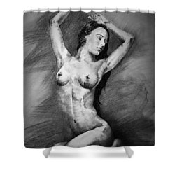 Page 23 Shower Curtain