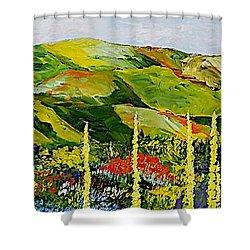 Pageantry Shower Curtain by Allan P Friedlander
