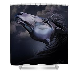 Pain Inside Me Shower Curtain