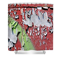 Paint Abstract Shower Curtain by Ed Weidman