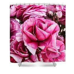 Paint Me Pink Ranunculus Flowers By Diana Sainz Shower Curtain