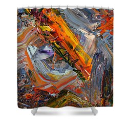 Paint Number 44 Shower Curtain by James W Johnson