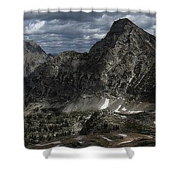 Paintbrush Divide Shower Curtain by Raymond Salani III