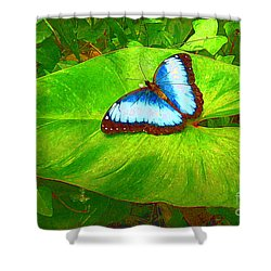 Painted Blue Morpho Shower Curtain by Teresa Zieba