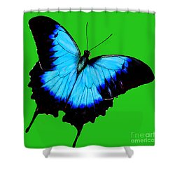 Painted Butterfly Shower Curtain by Bob and Nadine Johnston