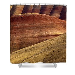 Painted Curves Shower Curtain by Mike  Dawson