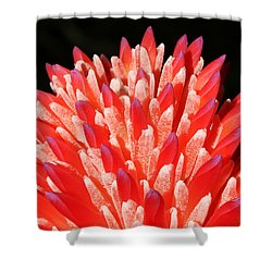 Painted Fingers Shower Curtain