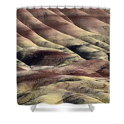 Painted Hills Oregon 11 Shower Curtain by Bob Christopher