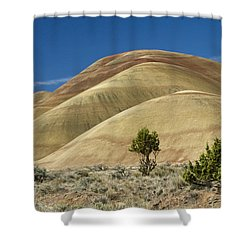 Shower Curtain featuring the photograph Painted Hills by Sonya Lang