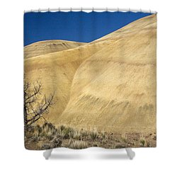Shower Curtain featuring the photograph Painted Hills Tree by Sonya Lang