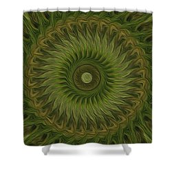 Painted Kaleidoscope 10 Shower Curtain