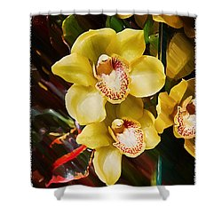 Painted Orchids Shower Curtain by John Haldane