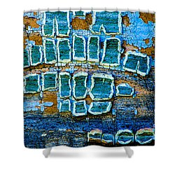 Painted Windows Number 1 Shower Curtain
