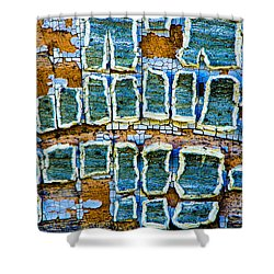 Painted Windows Number 2 Shower Curtain
