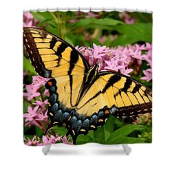 Painted Wings Shower Curtain by Rodney Lee Williams