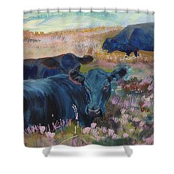 Painting Of Three Black Cows In Landscape Without Sky Shower Curtain