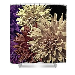 Pale Dahlias Shower Curtain
