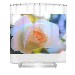 Pale Peach Translucence Shower Curtain