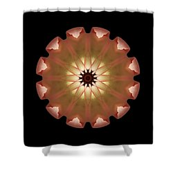Pale Pink Tulip Flower Mandala Shower Curtain