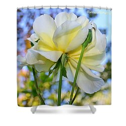 Pale Yellow Rose And Blue Sky Shower Curtain
