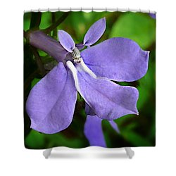 Shower Curtain featuring the photograph Wild Palespike Lobelia by William Tanneberger