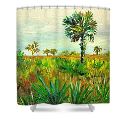 Palm And Palmetto Shower Curtain