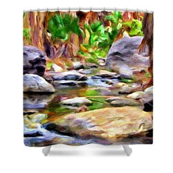 Palm Canyon Trail Shower Curtain by Michael Pickett