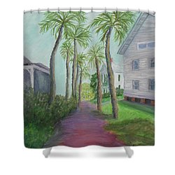 Palm Row In St. Augustine Florida Shower Curtain