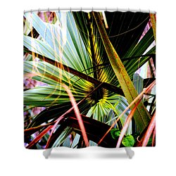Palm Through The Fronds Shower Curtain