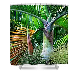 Palm Tree Inflorescence In The Rainforest  Shower Curtain by Karon Melillo DeVega