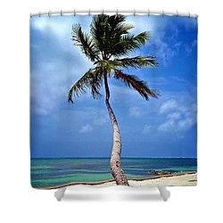 Palm Tree Swayed Shower Curtain by Kristina Deane