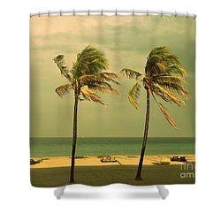 Palm Trees At Hallendale Beach Shower Curtain
