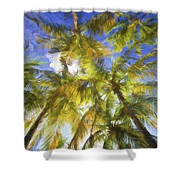Palm Trees Of Aruba Shower Curtain