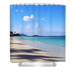 palm trees on the beach lanikai beach shower curtain