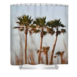 Palm Trees Through Tall Grass Shower Curtain