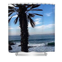 Palm Waves Shower Curtain by Susan Garren