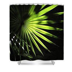 Palmetto And Rays Shower Curtain