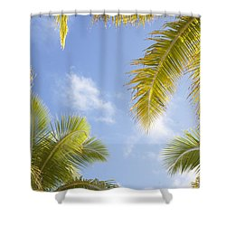 Palms And Sky Shower Curtain by Brandon Tabiolo