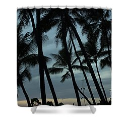 Shower Curtain featuring the photograph Palms At Dusk by Suzanne Luft