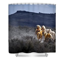 Palomino Buttes Band Shower Curtain