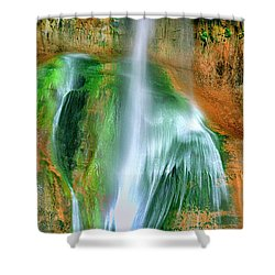 Shower Curtain featuring the photograph Panorama Lower Calf Creek Falls Escalante Nm Utah by Dave Welling