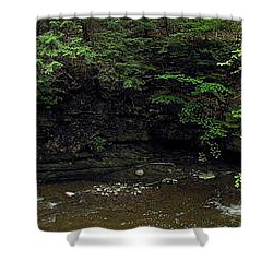 Panorama Of Wolf Creek At Letchworth State Park Shower Curtain by Rose Santuci-Sofranko