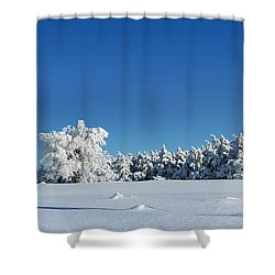 Panorama With Trees Covered With Snow In A Sunny Winter Day Shower Curtain