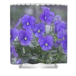 Pansy Love Shower Curtain by Kim Hojnacki