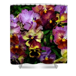 Pansy Mania Shower Curtain