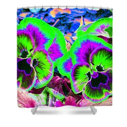 Pansy Power 60 Shower Curtain by Pamela Critchlow
