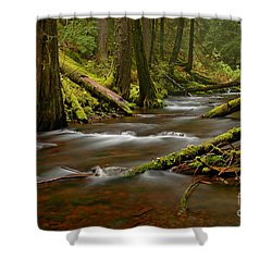 Panther Creek Landscape Shower Curtain by Nick  Boren