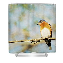 Papa Blue Shower Curtain