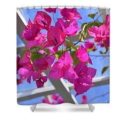 Paper Flowers Shower Curtain by Kathleen Struckle